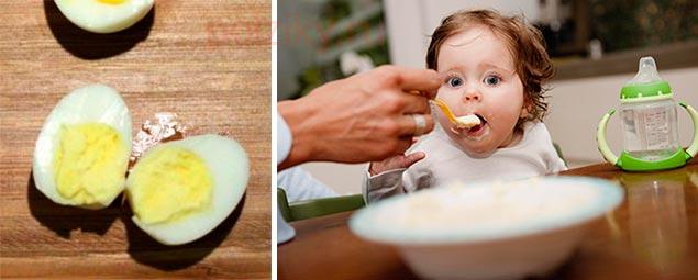 Какой выбрать желток для ребенка куриный или перепелиный