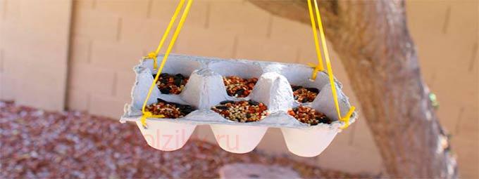 Кормушка для птиц из лотка для яиц