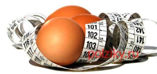 Месячная диета на яйцах