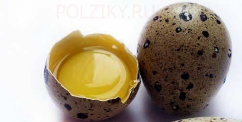 Сколько перепелиных яиц можно пить в день