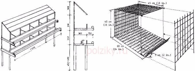 Клетка для перепелов чертеж своими руками пошаговая инструкция