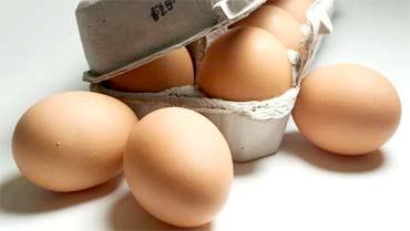 Требования к качеству яиц