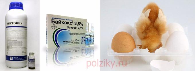 энрофлоксацин инструкция по применению для цыплят бройлеров