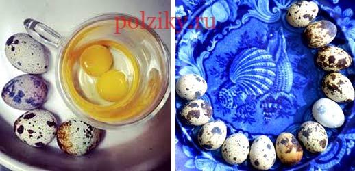 Можно ли сырые перепелиные яйца натощак