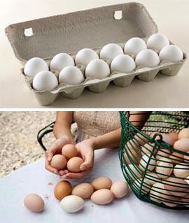 Как сохранить яйца свежими