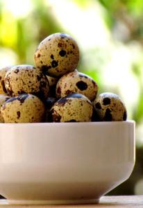 Как варить перепелиные яйца ребенку
