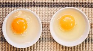 Сколько содержиться белка в яйце