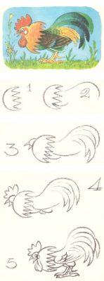 Поэтапное рисование курицы