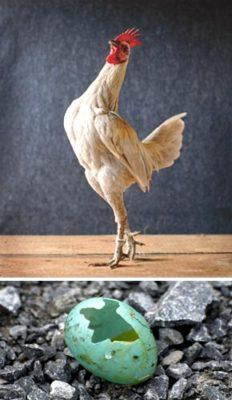 Найти дома яйцо