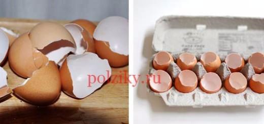 Есть ли в скорлупе куриного яйца незаметные для глаза трещины