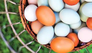 Первая категория яиц куриных
