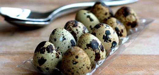 перепелиные яйца лечение