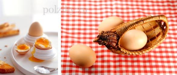 Что входит в состав куриного яйца и чем же оно полезно