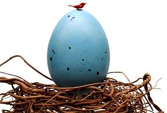 Найти яйца во сне