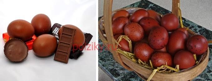 Купить яйца Марана для инкубации или взрослую птицу