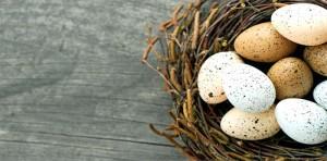 обработка яиц по санпину