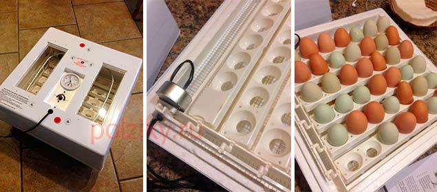 Автопереворот яиц в инкубаторе