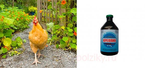 Креолин для дезинфекции птицы от клеща