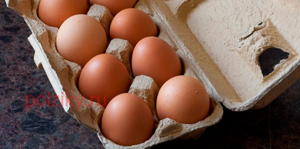 Отличия куриных и перепелиных яиц