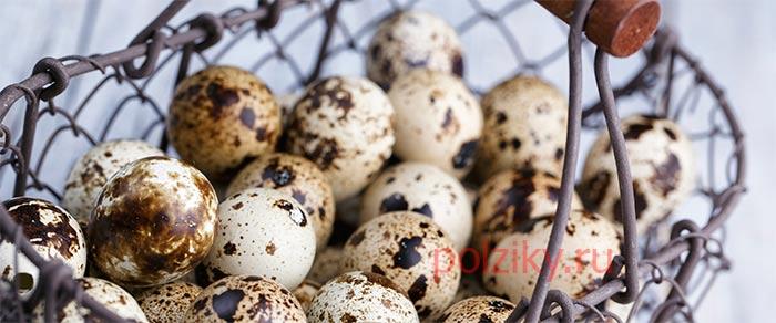 Чем отличается состав перепелиных и куриных яиц