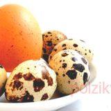Что приготовить полезного из перепелиных яиц