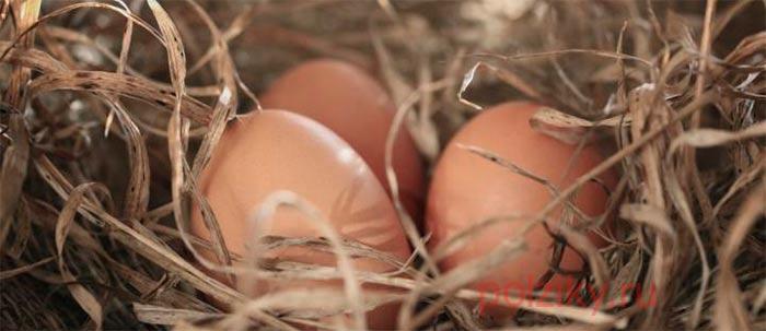 Как сделать муляж яйца своими руками