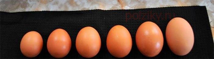 Категории куриного яйца и его вес