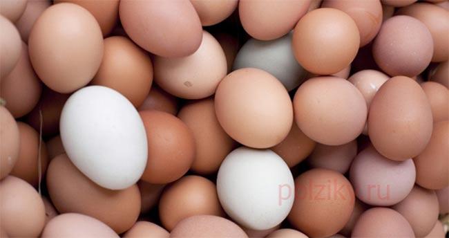 Сколько весят куриные яйца