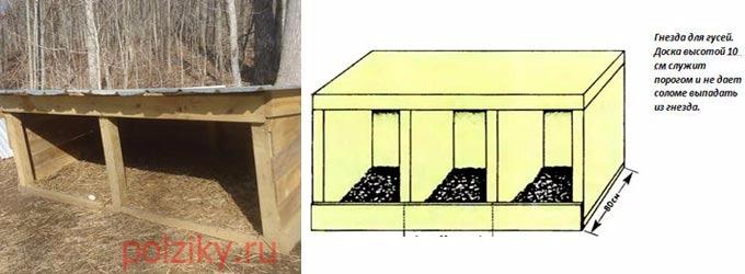 Из каких материалов строят гнезда для гусей