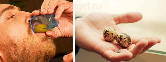 Как влияют перепелиные яйца на потенцию