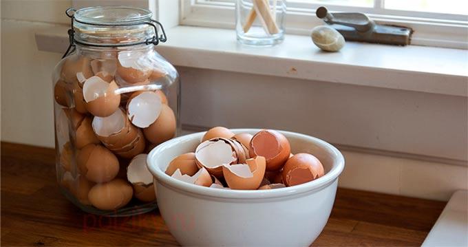 Как правильно принимать яичную скорлупу для поддержания костей