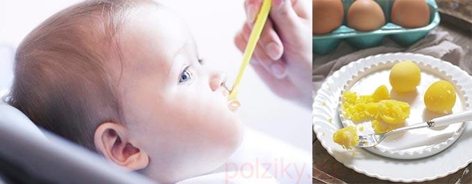 Когда можно начинать кормить ребенка желтком