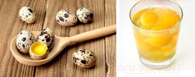Можно ли пить сырые перепелиные яйца