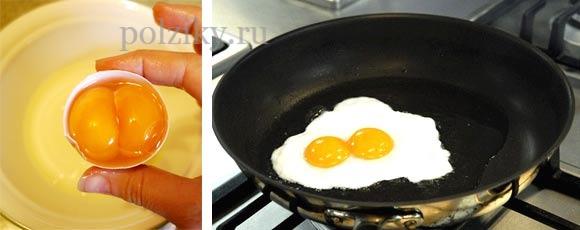 Почему в яйце два желтка