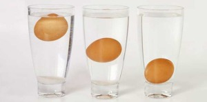 если яйца всплывают в воде