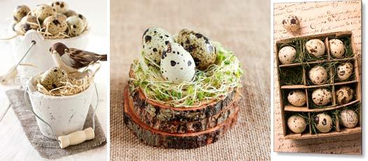 Потребление перепелиных яиц в сыром виде