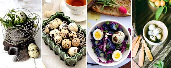 Польза от употребления перепелиных яиц