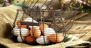 Состав куриного и перепелиного яйца