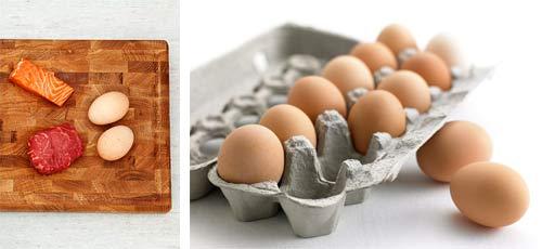Как много белка в белке яйца