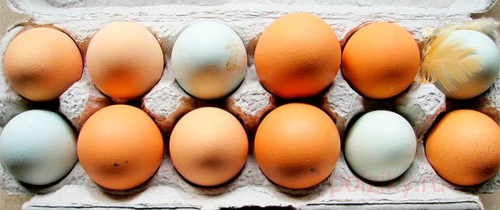 Приметы про яйца с кровью