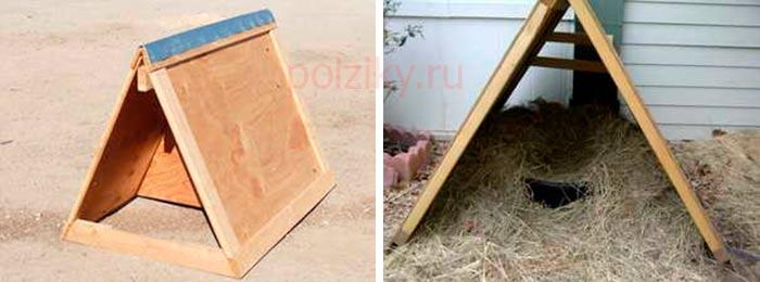 Как построить гнездо для мускусной утки