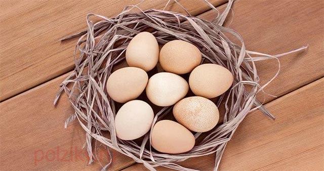 Какой химический состав яйца цесарки